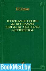 Клиническая анатомия органа зрения человека — Сомов Е.Е.