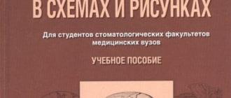 Судебная медицина в схемах и рисунках — Пашинян Г.А.